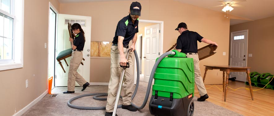 Valrico, FL cleaning services